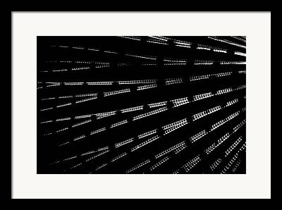 istic Fish Abstraction Photographs Framed Prints