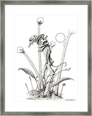Stipplewalker Framed Print by J P Lambert