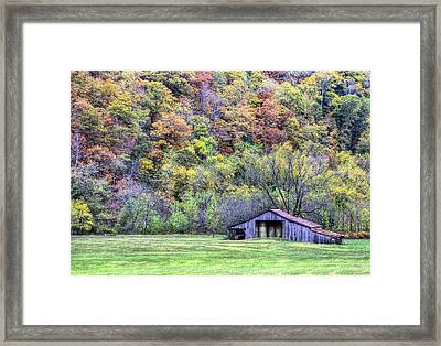 Stocking Up For Winter Framed Print by JC Findley