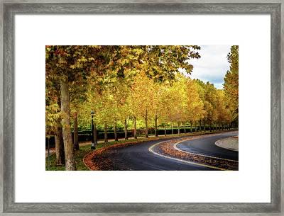Stockton Street In Autumn Framed Print