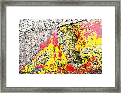 Stone Abstract Framed Print by Tom Gowanlock