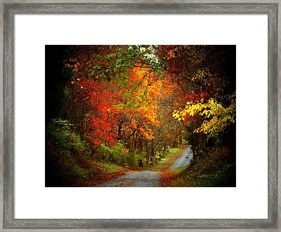 Stone Bridge Road Framed Print by Joyce Kimble Smith