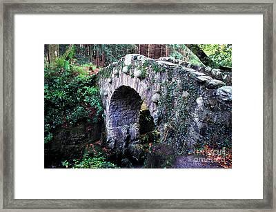 Stone Bridge Framed Print by Thomas R Fletcher