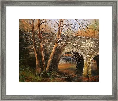 Stone Bridge Framed Print by Tom Shropshire