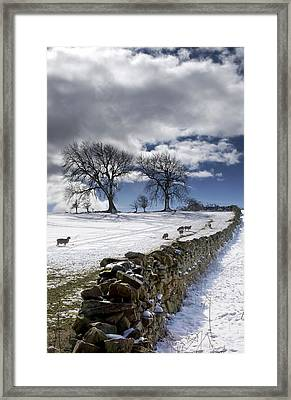 Stone Fence, Weardale, County Durham Framed Print