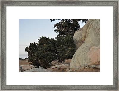 Stone Hand Framed Print