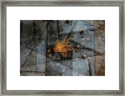 Stone Life Framed Print