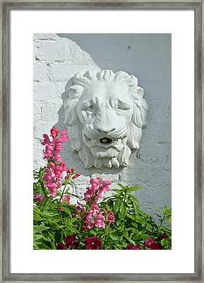 Stone Lion Head With Flowers Framed Print