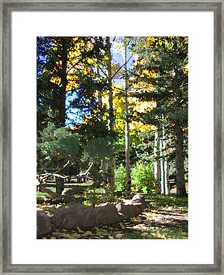 Stone Park Trails Framed Print
