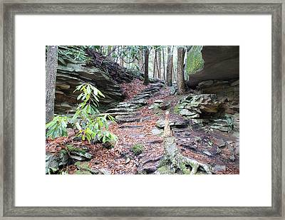 Stone Path Framed Print by Heather Green