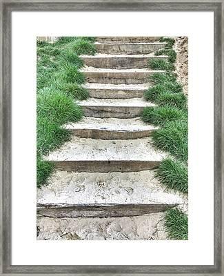 Stone Steps Detail Framed Print