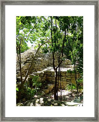 Framed Print featuring the photograph Stone Steps In The Jungle by Francesca Mackenney