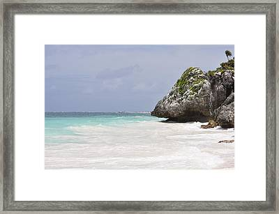 Framed Print featuring the photograph Stone Turtle by Glenn Gordon