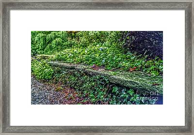Stone Wall At Laurelwood Framed Print