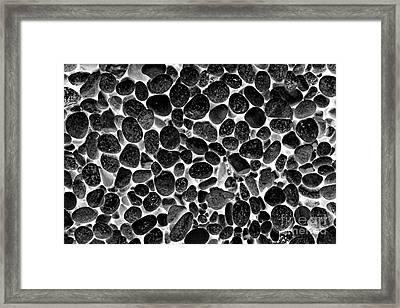 Stoned Framed Print by John Stephens