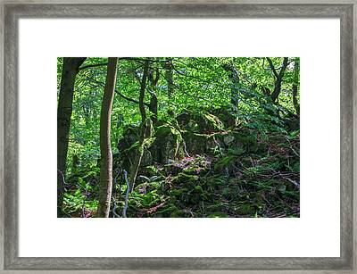 Stones In A Forest In Vogelsberg Framed Print