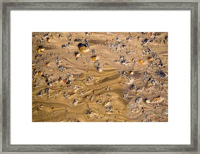 Framed Print featuring the photograph Stones In A Mud Water Wash by John Williams