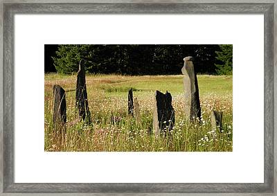 Stones In Summer Framed Print by Donna Meadows