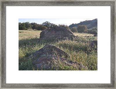 Stones In The Field Of Morning Framed Print