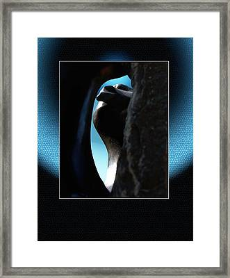 Stoneview Framed Print by Richard Gordon