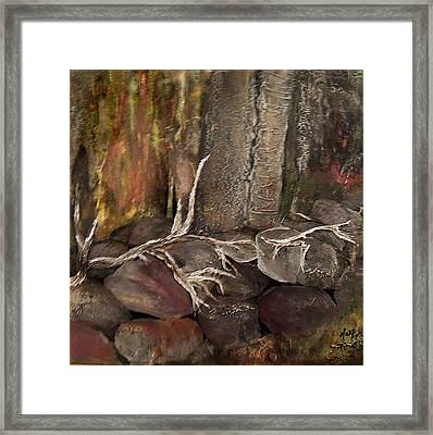 Stonewall Framed Print by Debbie Hall