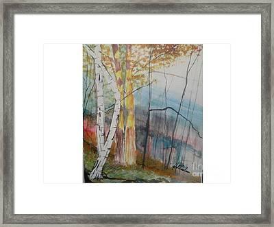Stoney Brooke Park Framed Print by Hal Newhouser