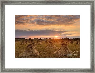 Stook Sunset Framed Print