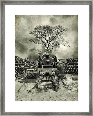 Stop Framed Print by Alexander Kruglov