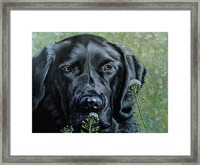 Stop And Smell The Flowers Framed Print by Beverly Fuqua