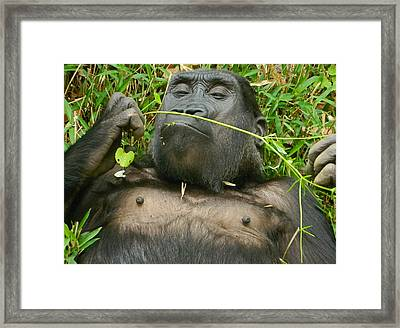 Stop And Smell The Grass Framed Print