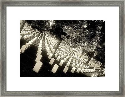 Stop..don't You Dare Move.. Framed Print by Al  Swasey