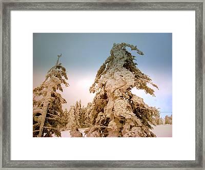 Stopped Wind Framed Print