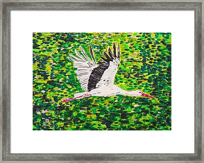 Stork In Flight Framed Print