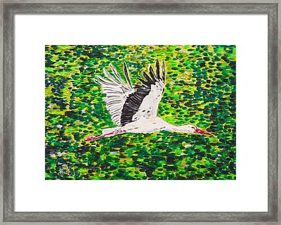 Stork In Flight Framed Print by Valerie Ornstein