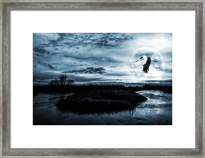 Framed Print featuring the photograph Stork In Moonlight by Jaroslaw Grudzinski