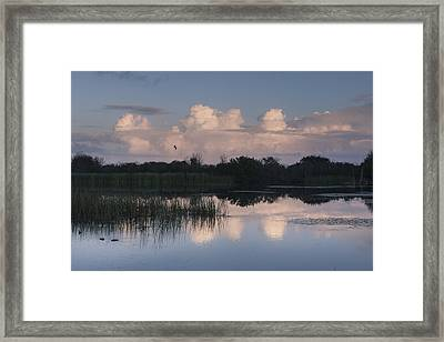 Storm At Sunrise Over The Wetlands Framed Print