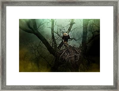 Storm At The Old Nest Framed Print