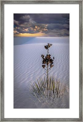 Storm Light At White Sands Framed Print