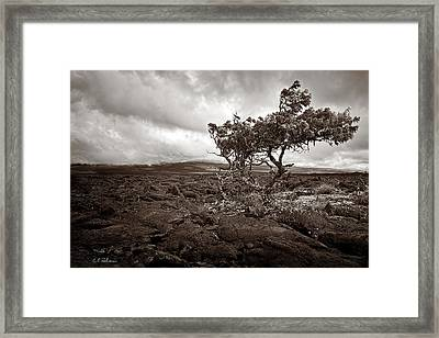 Storm Moving In - Sepia Framed Print by Christopher Holmes