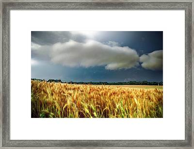 Storm Over Ripening Wheat Framed Print