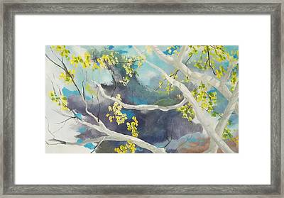 Storm Px 7 Framed Print by Michael Dillon