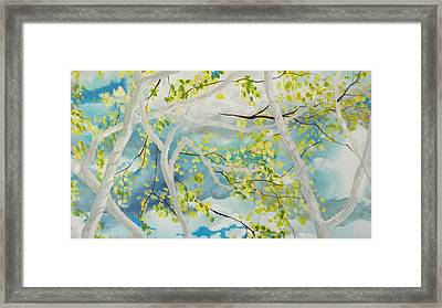 Storm Px2 Framed Print by Michael Dillon