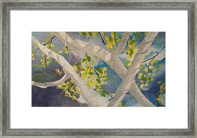 Storm Px5 Framed Print by Michael Dillon