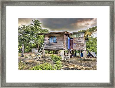 Storm Survivor Framed Print