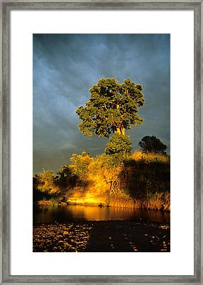 Storm Time Framed Print