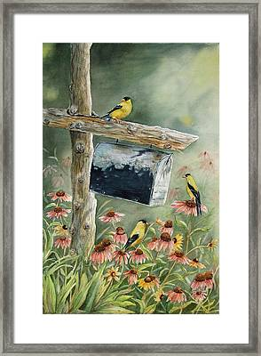 Stormbirds Framed Print by Patricia Pushaw
