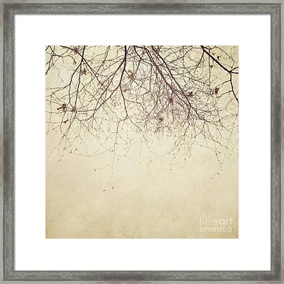 Stormbound Framed Print by Priska Wettstein