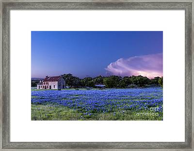 Stormy Skies Over Bluebonnets Framed Print