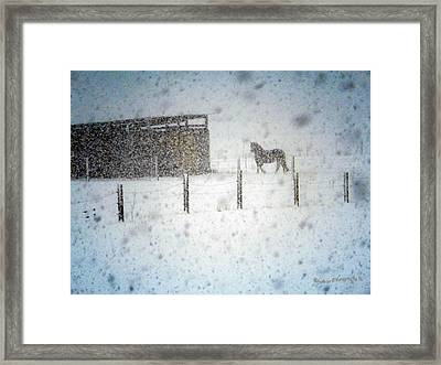 Storms Of Life Framed Print