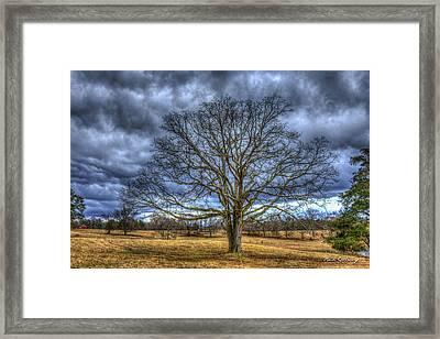 Stormy Day Oak Winter Farm Scene Art Framed Print
